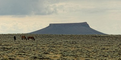 Pilot Butte Wild Horse SCenic Tour Wyoming