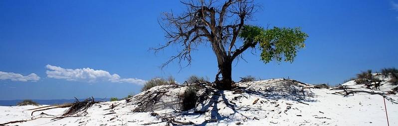 Visiter White Sands au Nouveau-Mexique