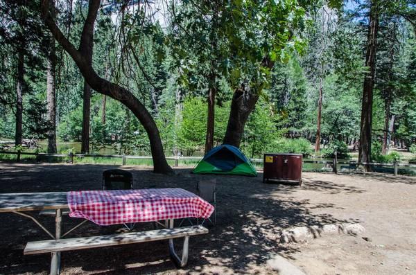 Camping Yosemite NP