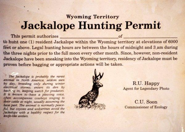 Jackalope permis de chasse