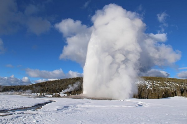 Geyser Yellowstone