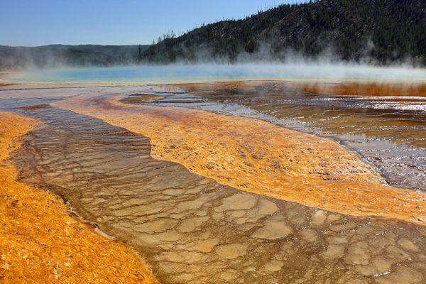 Parc du Yellowstone