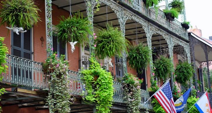 Activités à La Nouvelle-Orléans