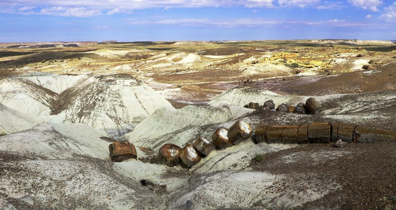 Visiter Petrified Forest Painted Desert Arizona