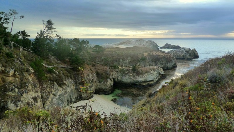 Point Lobos State Natural Reserve Californie USA