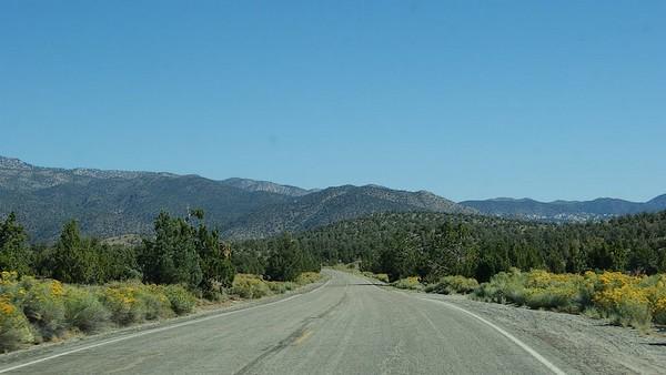 Scenic Drive Ancient Bristlecone Pine Forest