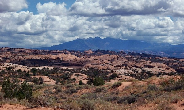 Petrified Dunes Viewpoint Arches NP