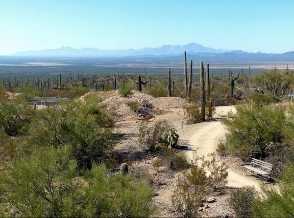 Overlook Earth Sciences Center Sonora Desert Museum