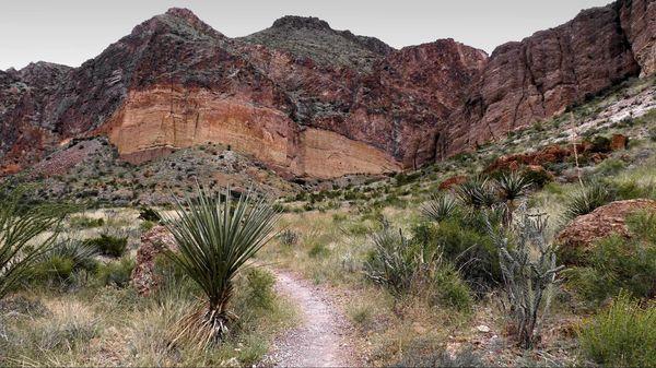 Lower Burro Mesa Pouroff Trail Big Bend