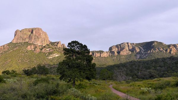 Montagnes Big Bend National Park
