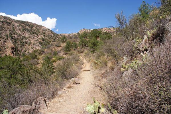 Lost Mine Trail Big Bend