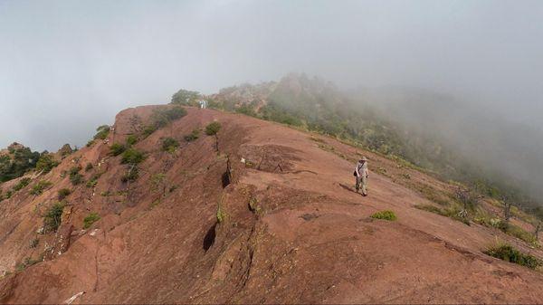 Sommet Lost Mine Trail Big Bend