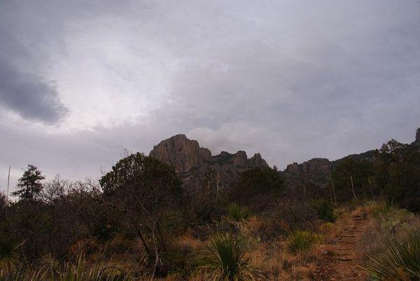 Chisos Basin Loop Trail Big Bend