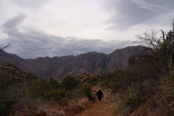 Chisos Basin Loop Trail et les montagnes environnantes Big Bend