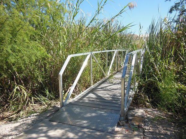 Passerelle Río Grande Village Nature Trail Big Bend