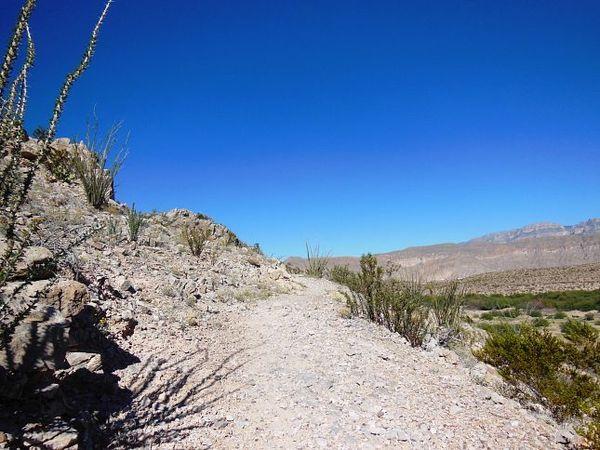 Río Grande Village Nature Trail Big Bend NP