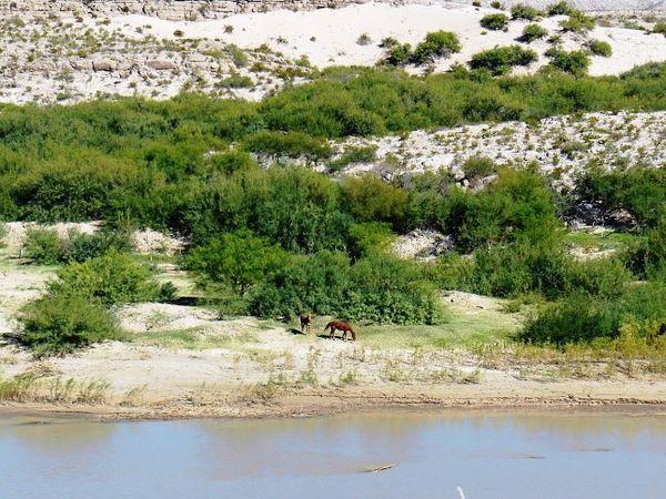 Le Mexique, vu depuis Río Grande Village Nature Trail