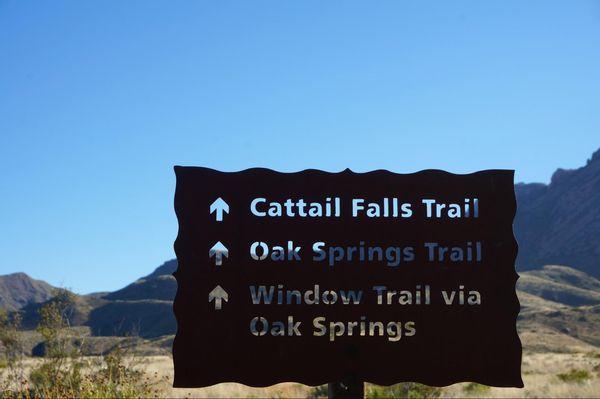 Cattail Falls Trail Big Bend