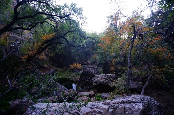 Cattail Falls Big Bend