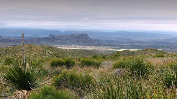Sotol Vista Big Bend