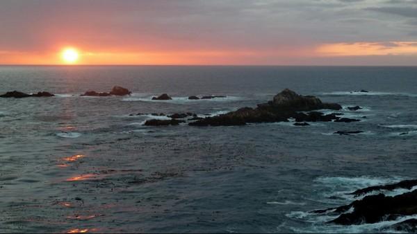 Crépuscule à Point Lobos