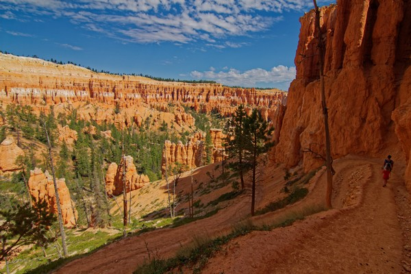 Peekaboo Loop Bryce Canyon