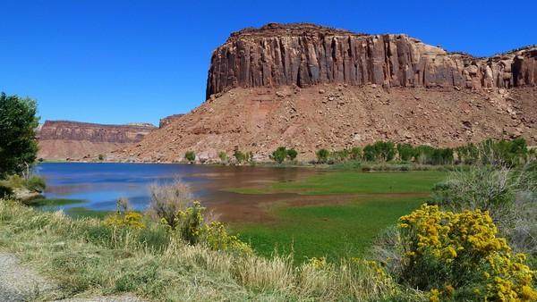 The Needles : le long de l'UT 211 Canyonlands