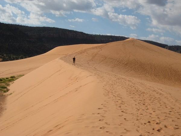 Balade vers le sommet de la grande dune Coral Pink Sand Dunes