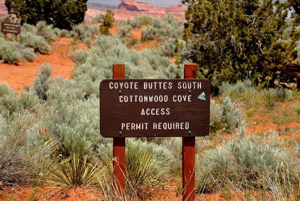 Permis pour Coyote Buttes South Arizona