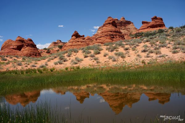 Les teepees au printemps Paw Hole Coyote Buttes South Arizona