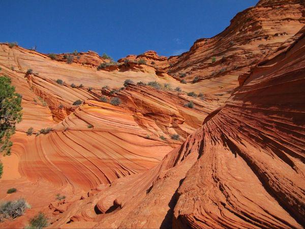 Décors de vagues Paw Hole Coyote Buttes South Arizona