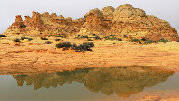 Cottonwood Cove Coyote Buttes South Arizona