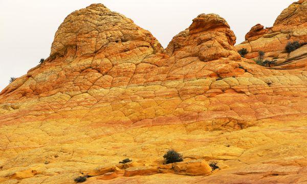 Brainrocks Coyote Buttes South Arizona