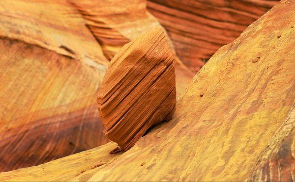 roche Coyote Buttes South Arizona