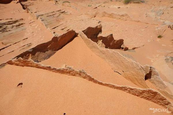 Dentelle fragile Coyote Buttes South Arizona