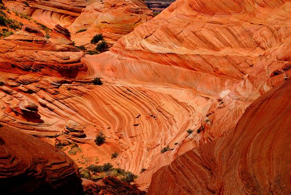 Coyote Buttes South Arizona
