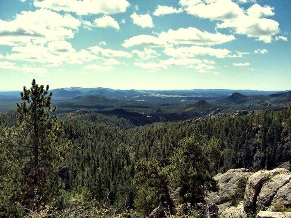 Les Black Hills Custer State Park