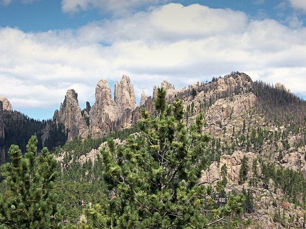 Aiguilles Custer State Park