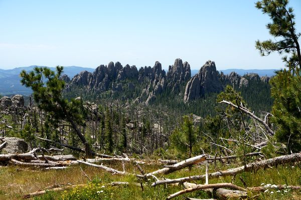 Black Elk Peak Custer State Park