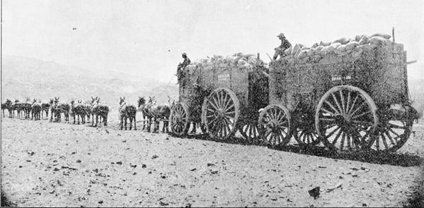 Loaded 20 Mule Team leaving Death Valley