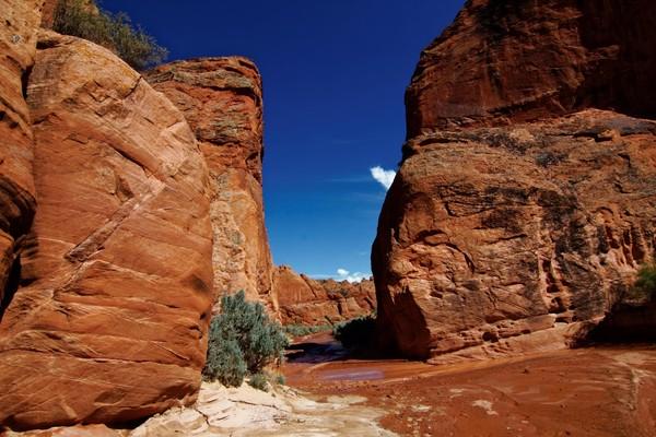 Porte Edmaier's Secret Arizona