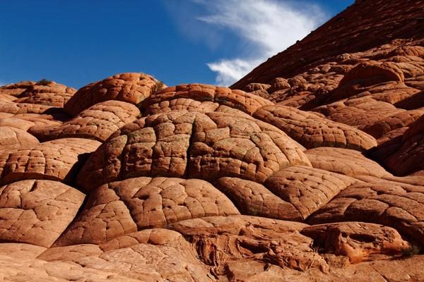 Brainrocks Edmaier's Secret Arizona