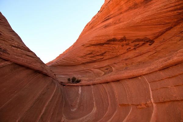 Au creux de la vague Edmaier's Secret Arizona