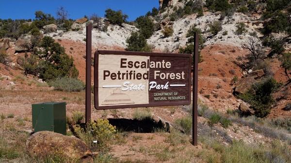 Panneau Escalante Petrified Forest State Park