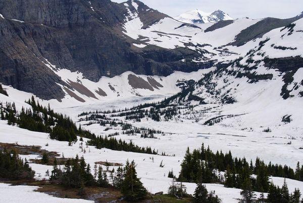 Hidden Lake Trail Glacier NP