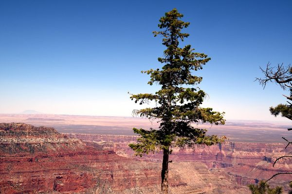Point Imperial grand Canyon rive Nord Arizona