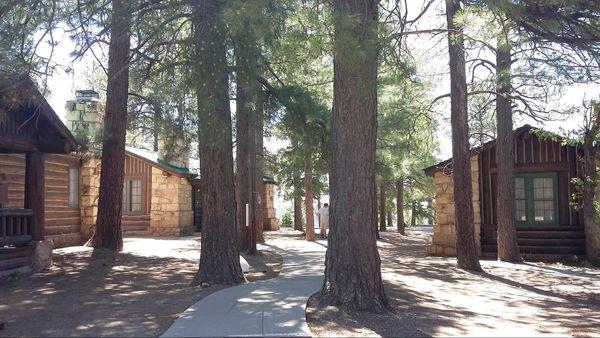 Les cabins du Grand Canyon Lodge Rive nord