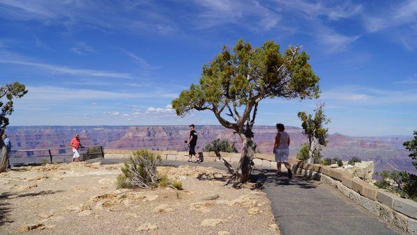 Moran Point Grand Canyon Arizona