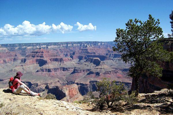Rim Trail Grand Canyon Arizona