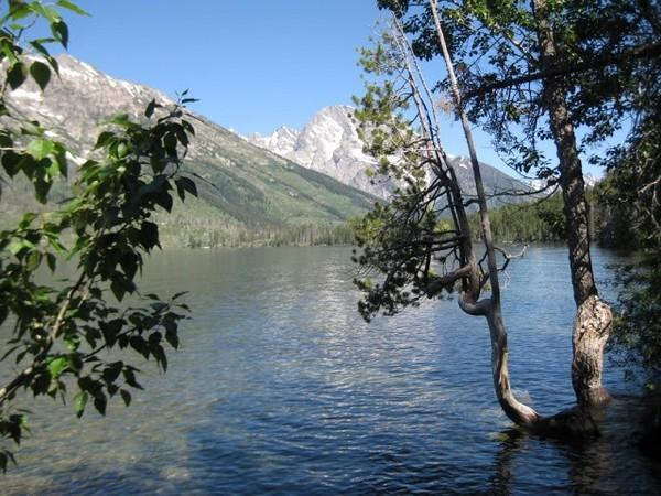 Jenny Lake Grand Teton Wyoming